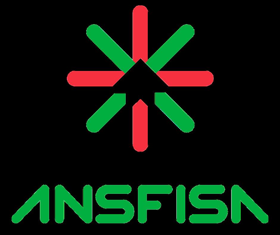 ANSFISA - Agenzia Nazionale per la Sicurezza delle Ferrovie, Infrastrutture Stradali ed Aeroportuali